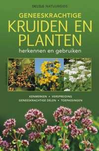 Geneeskrachtige kruiden en planten-Elfrune Wendelberger