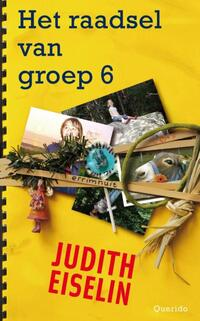 Het raadsel van groep 6-Judith Eiselin-eBook