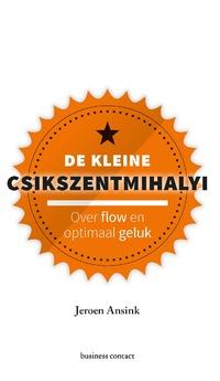 De kleine Csikszentmihalyi-Jeroen Ansink-eBook