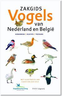 Ger Meesters, Jip Louwe Kooijmans, Luc Hoogenstein