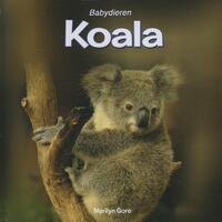 Koala-Marilyn Gore