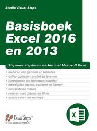 Basisboek Excel 2016 en 2013-